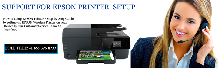 "How to fix HP ""Printer Offline"" error in simple steps —Articles"