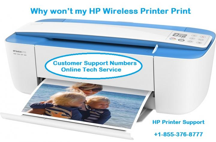 Hp Wireless Printer Won't Print - Customer Support Number