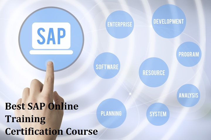 Best SAP Online Training Certification Course