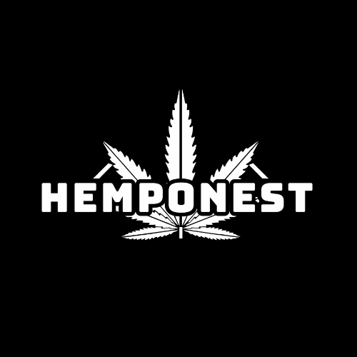 Hemp Clothing Brands India | Hemponest